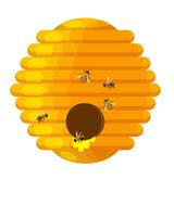 Пчелни майки от пчеларска биоферма V&D